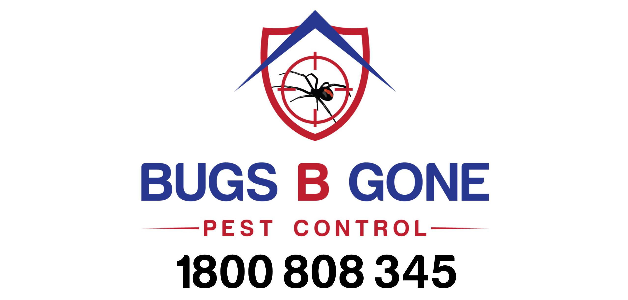 Termite pre-treatments to Australian Standard.